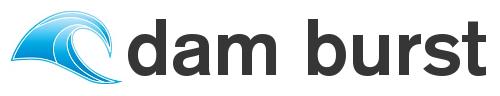 Dam burst logo