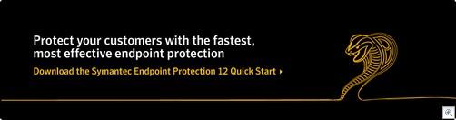 Symantec1238123p