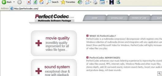 Perfectcodec.com11142006