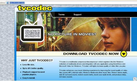 Tvcodec.com11182006